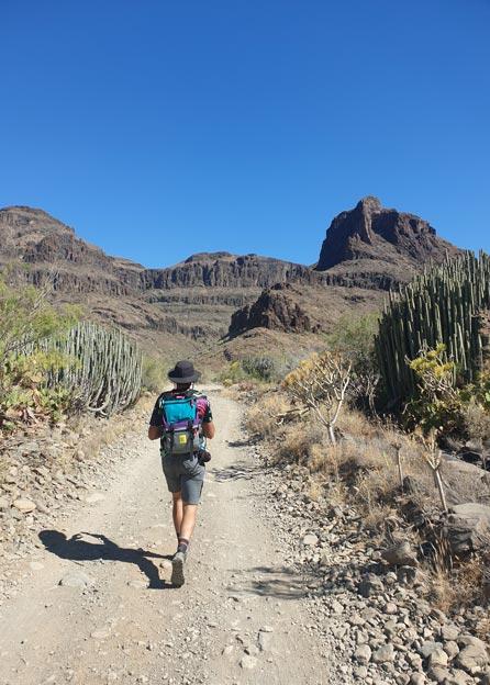 Way of St James Gran Canaria, Fataga Ravine