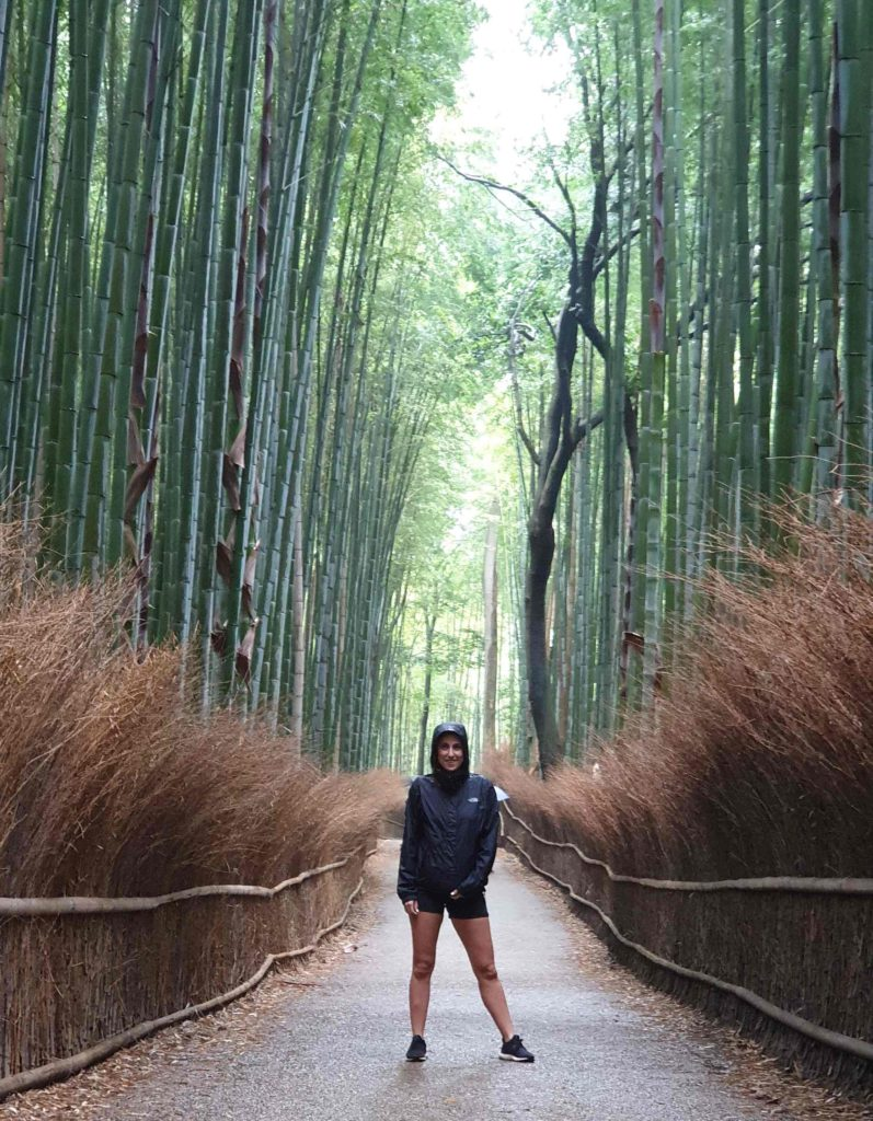 Things to do in Kyoto, Bamboo forest