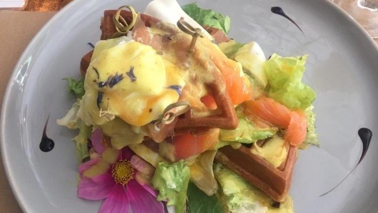 Desayuno Organic jungle