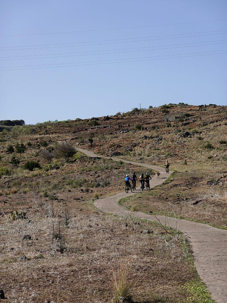 Paths of the enduro route through El Toscón