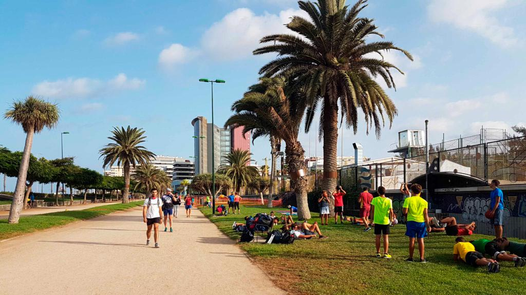 Where to run in Las Palmas: Parque Romano