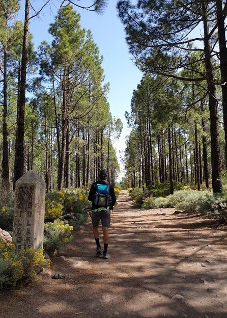 Etapa 2 camino de santiago gran canaria