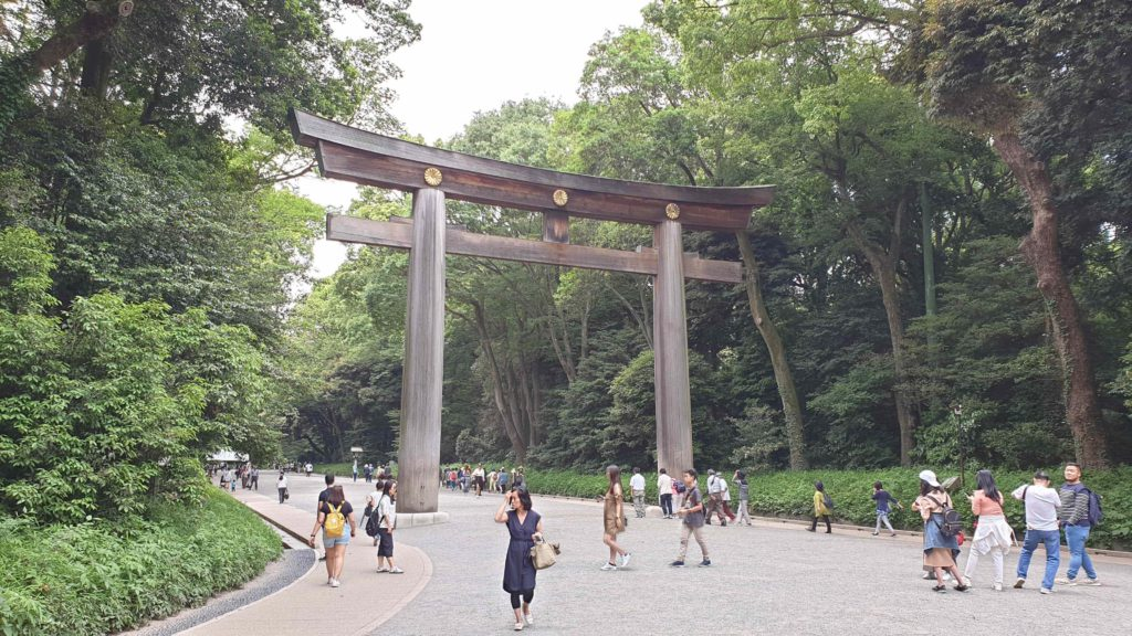 Great wooden Tori at Yoyogi Park, places to visit in Tokyo in 4 days