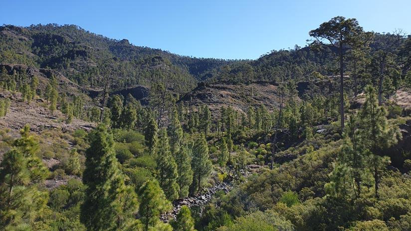 Reserva Natural Integral de inagua