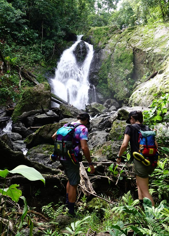 Things to do in Costa Rica: Corcovado National Park