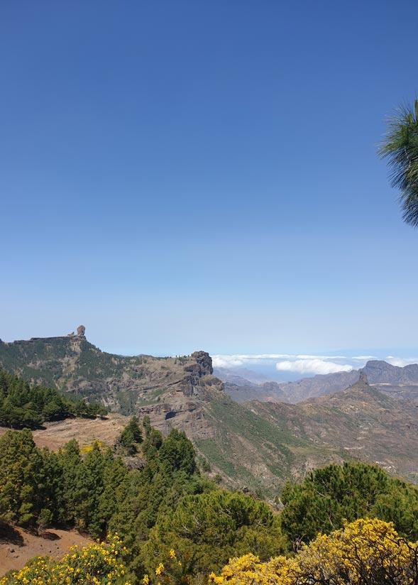 Vistas al Roque Nublo y Bentayga