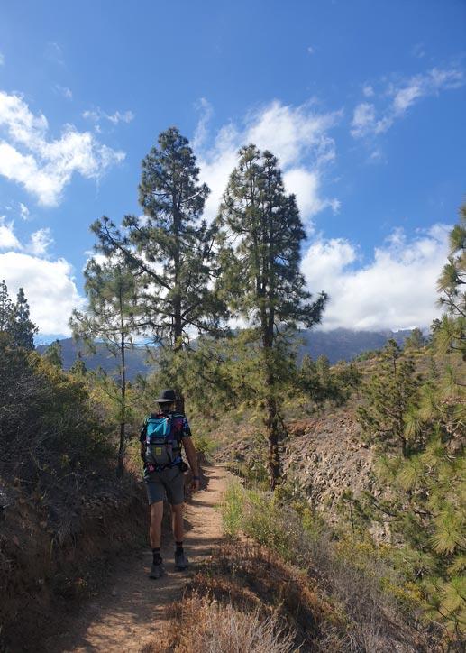 Way of St James. Trail reaching Tunte
