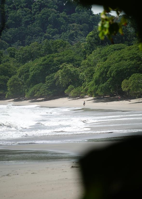 Qué ver en Costa Rica: Manuel Antonio
