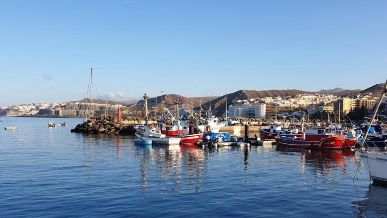Arguineguin port