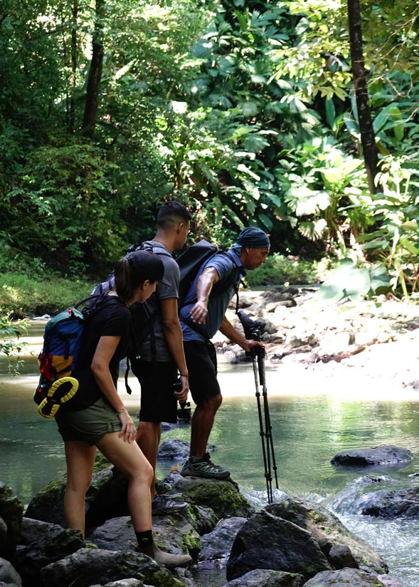 Tours in Costa Rica: Top Trails Corcovado