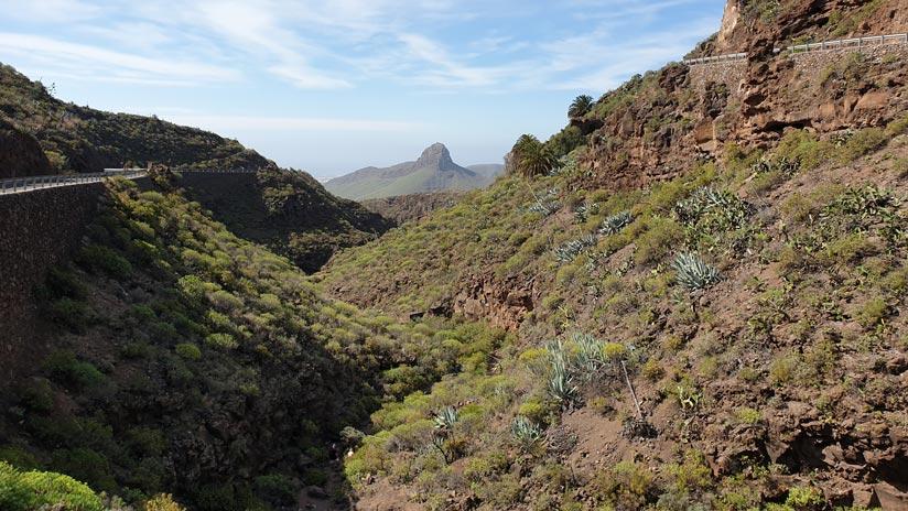 Views to Las Vacas ravine in Agüimes