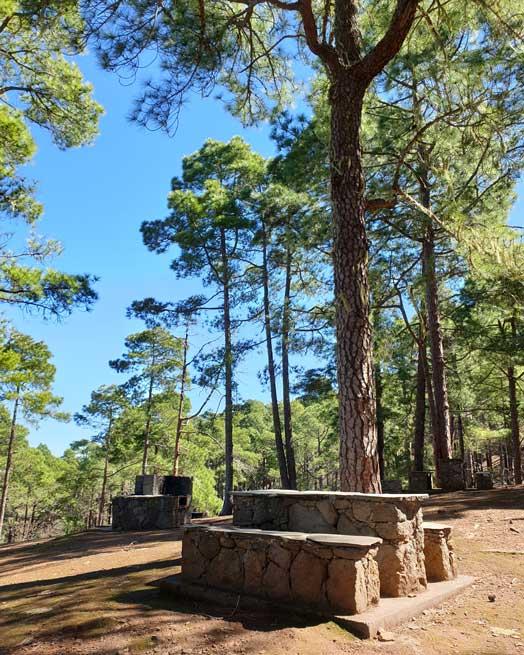 Zona recreativa de Tamadaba